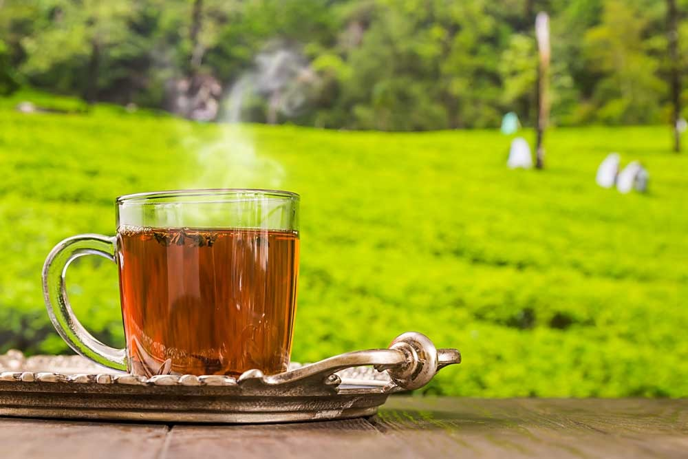 Enjoy tea with all five senses